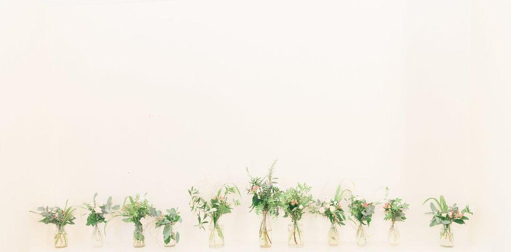 Bridesdogood22.jpg