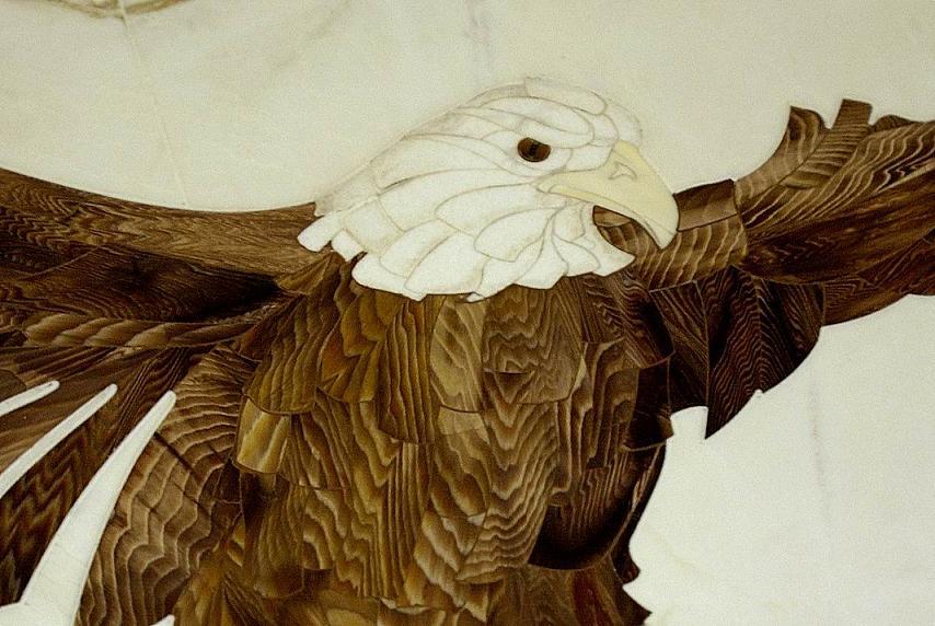eagle close.jpg