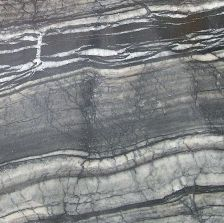 Polar Black
