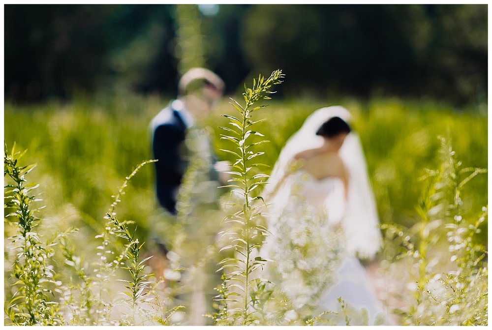 vivalove-sarah-zac-new-hope-pennsylvania-bowman-tower-wildflower-preserve-wedding_0148.jpg