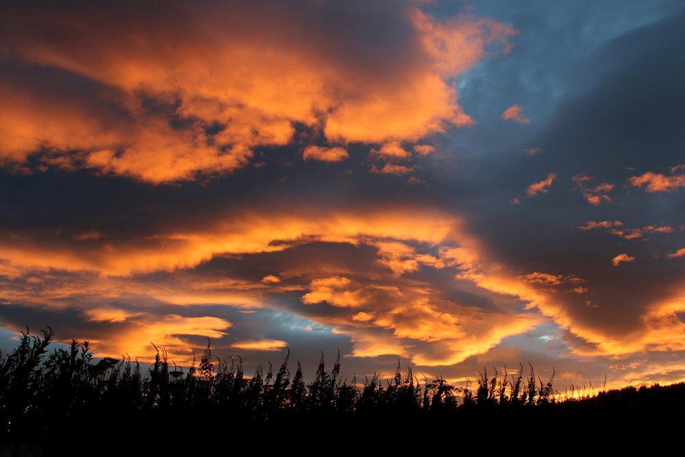 sunset 1 homer.jpg