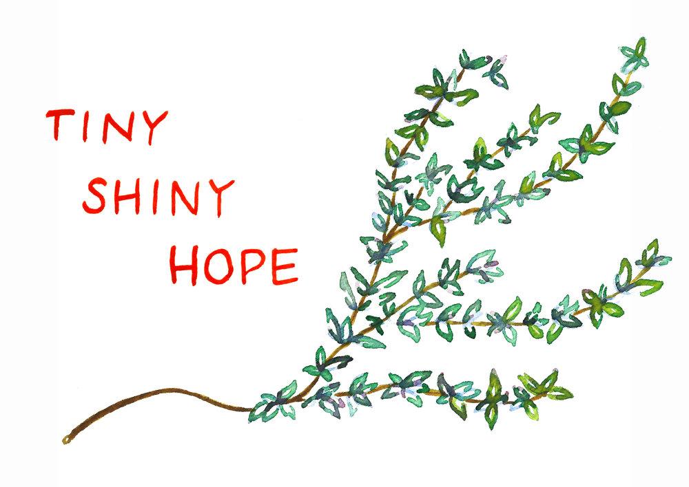 Tiny Shiny Hope by Kate Blanchard.jpg