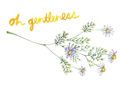 Oh Gentleness_Katie Blanchard.jpg