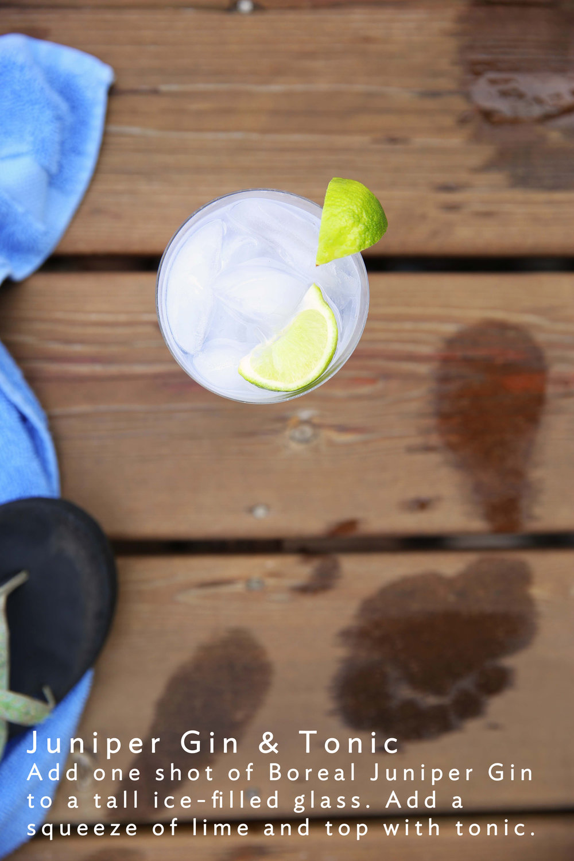 juniper gin and tonic copy.jpg