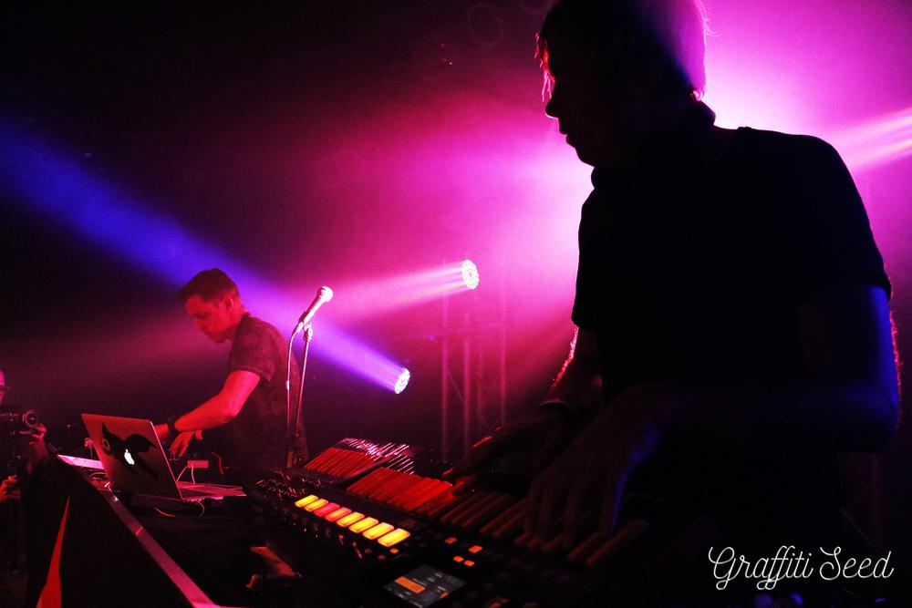 Goldfish-Noarthcoast-music-festival-1.jpg