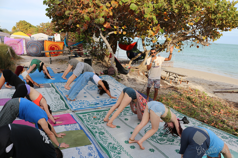 downward dog _Skylight Yoga @ Fractal Beach_.jpg
