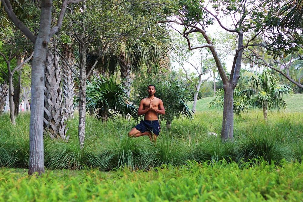 _needs watermark_ vriksasana with anjali mudra 2 _Skylight Yoga_ south pointe park.jpg