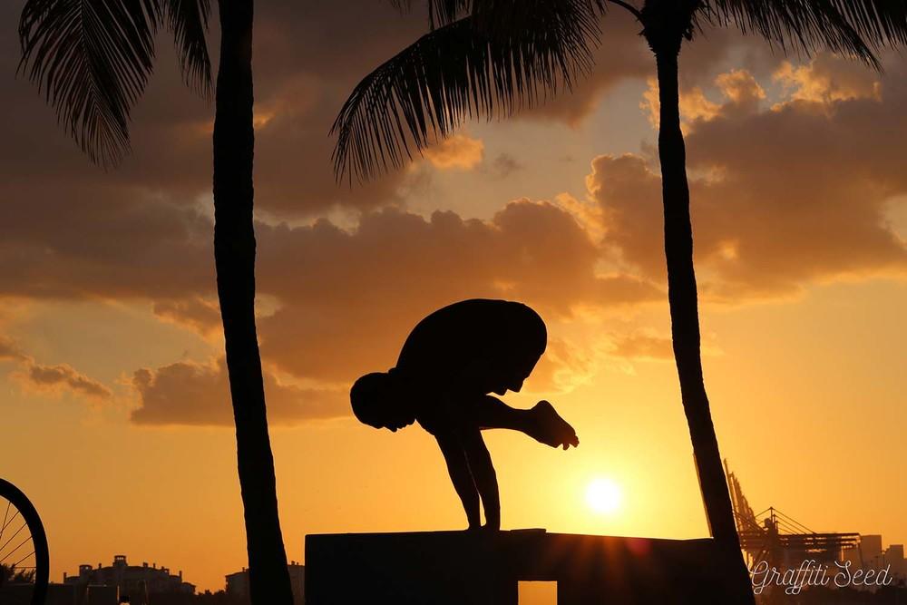 _Skylight Yoga_ kakasan sunset south pointe park.jpg