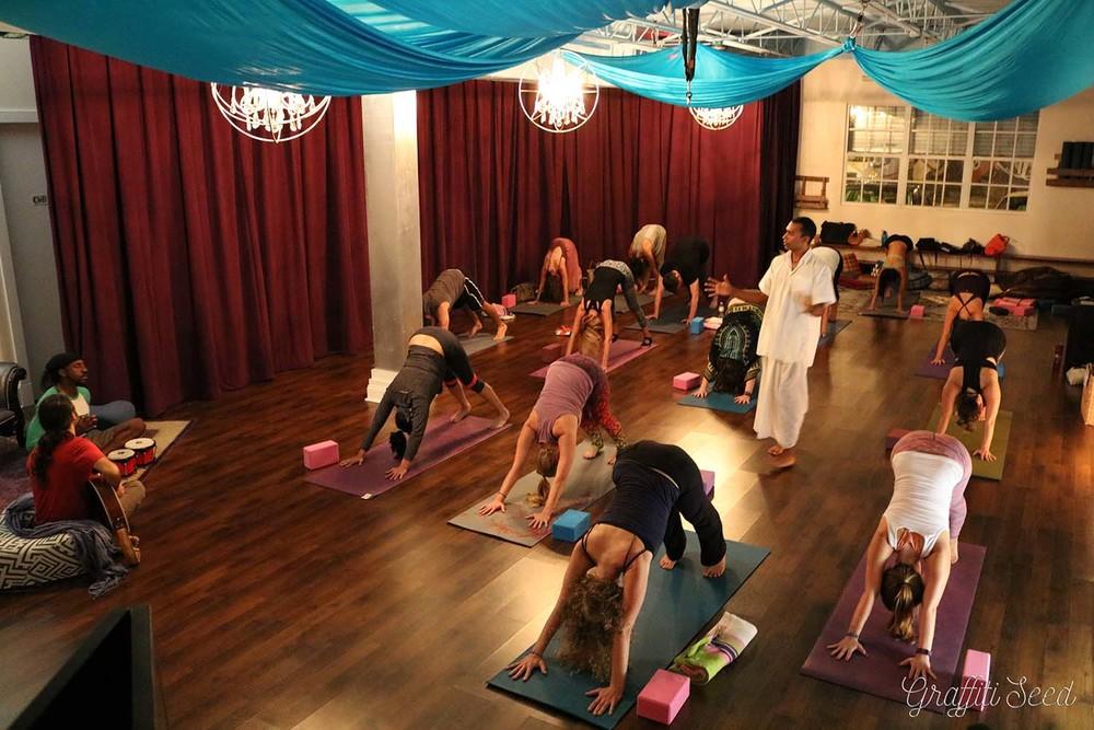 downward dog 3 _Inhale Miami_ Live Music Raj Yoga w_ Sujal P. _ The Natural Mystics.jpg