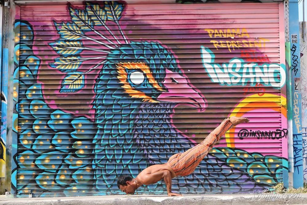 Full Mayurasana Peacock Pose Wynwood _Art Basel 2015_Panama Represent__Skylight Yoga_.jpg