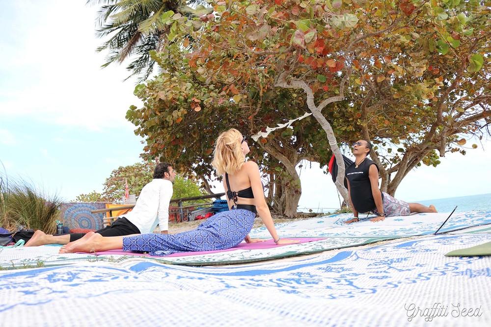 Urdhvamukhasvanasana _ upward facing dog pose _Skylight Yoga @ Fractal Beach_.jpg