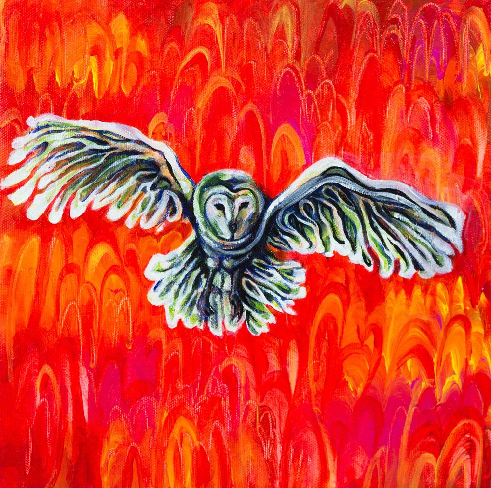s6 owl.jpg