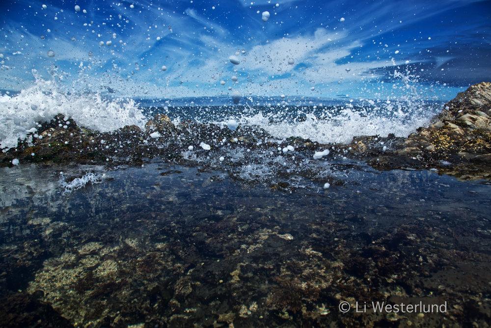 Momentum - Illusion of Abundance, Half Moon Bay, CA, 2016.jpg
