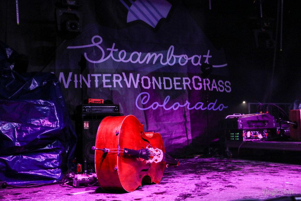 Winter Wonder Grass SBS (21 of 138).jpg