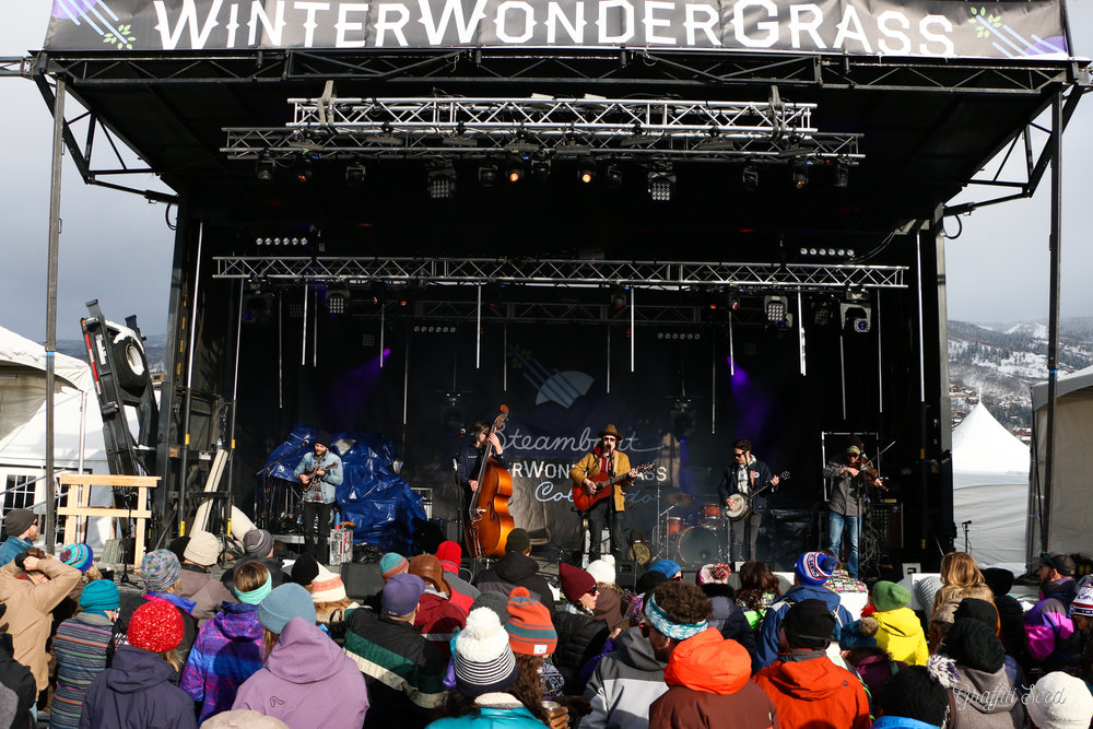 Winter Wonder Grass SBS (7 of 138).jpg