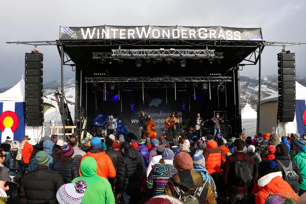 Winter Wonder Grass SBS (6 of 138).jpg