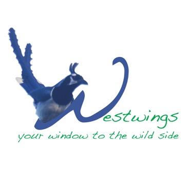 Westwings logo1.jpeg