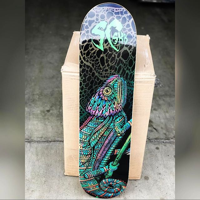 SCSK8 Chameleon 🦎 #scsk8 #skateboarding #skateboard #skatelife #skateordie #chameleon #wildlife