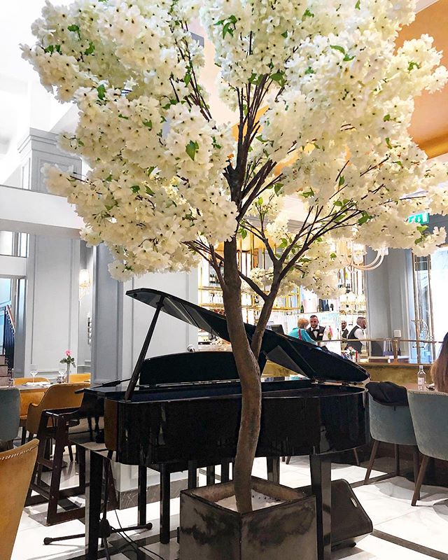 A grand piano for the grand restaurant ✨ #grandrestaurant #lovelivemusic #cozy