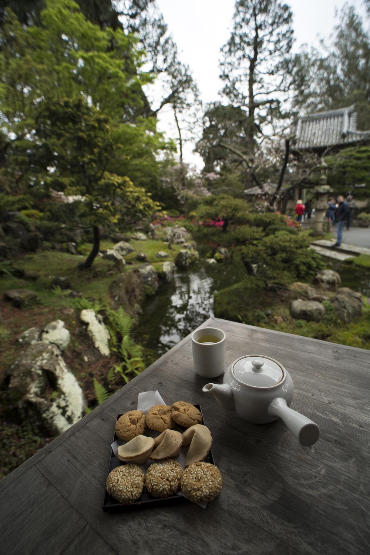 San Francisco Japanese Tea Garden — Benjamin J Bogard