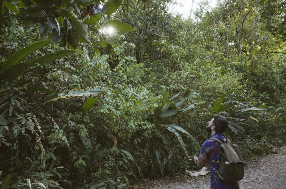 Costa_Rica_286.jpg
