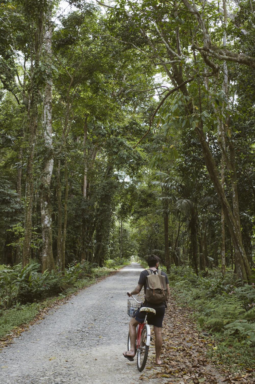 Costa_Rica_477.jpg