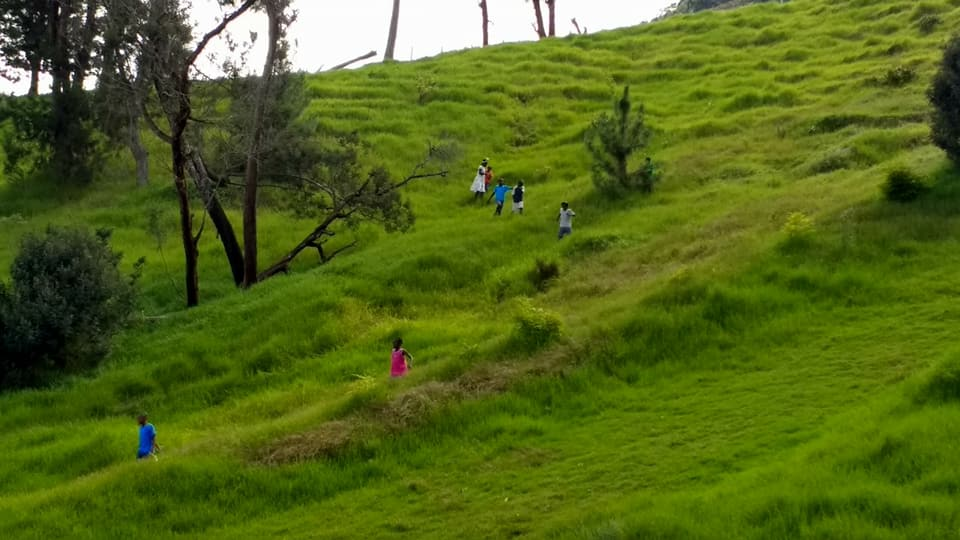 children on a hill.jpg