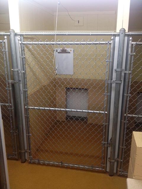 Dog cage 2.JPG