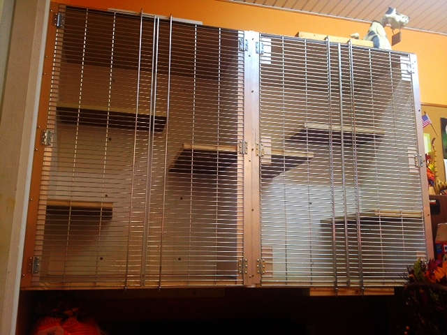 Cat Cages (Large) 2.JPG