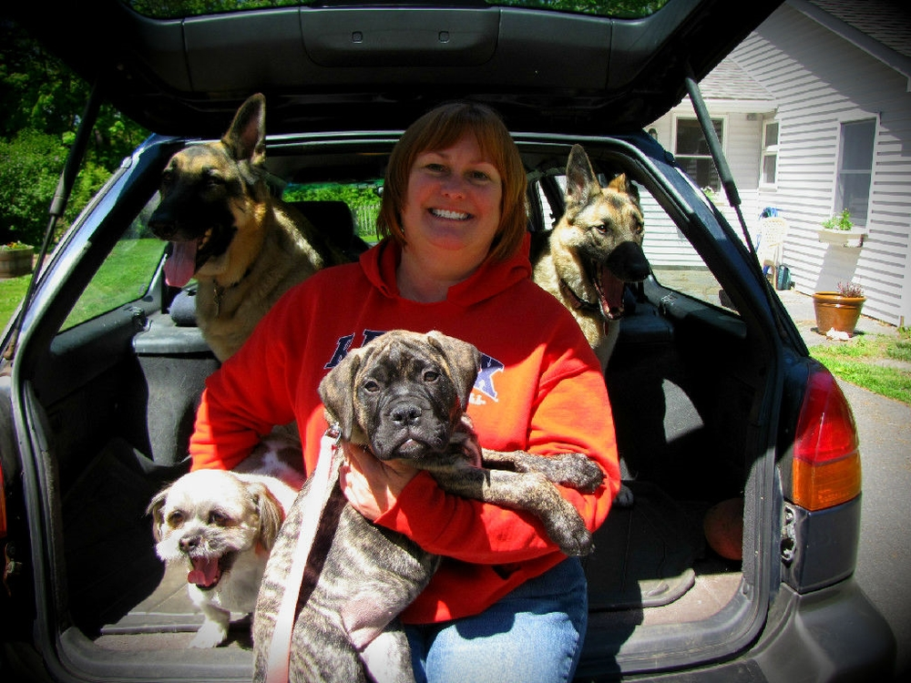 Cindy - Dogs2.jpg