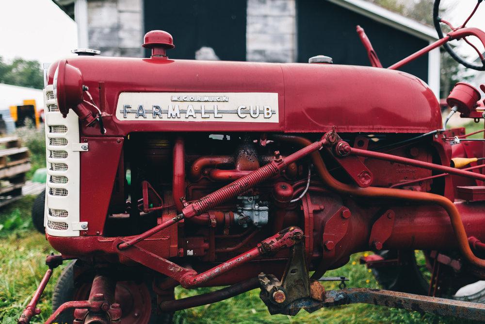 Bumbleroot Farm_091517 (1 of 1)-50.jpg