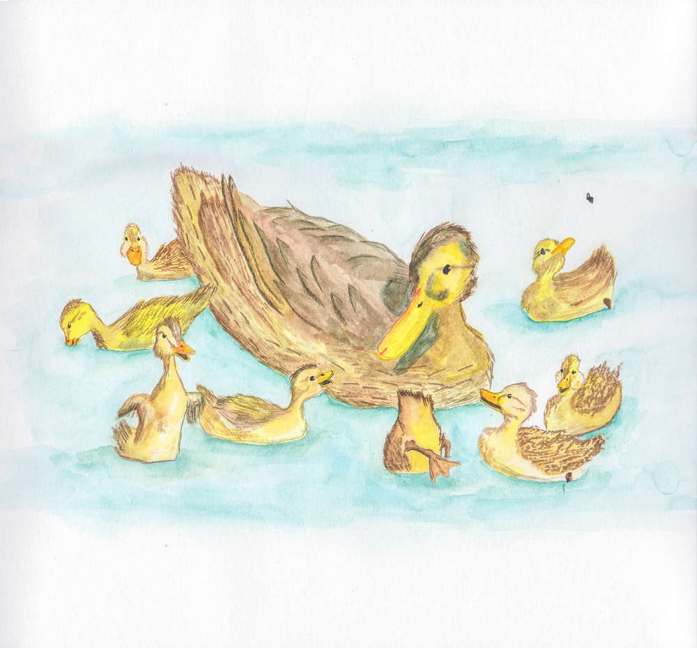 Make Way For Ducklings, 2015