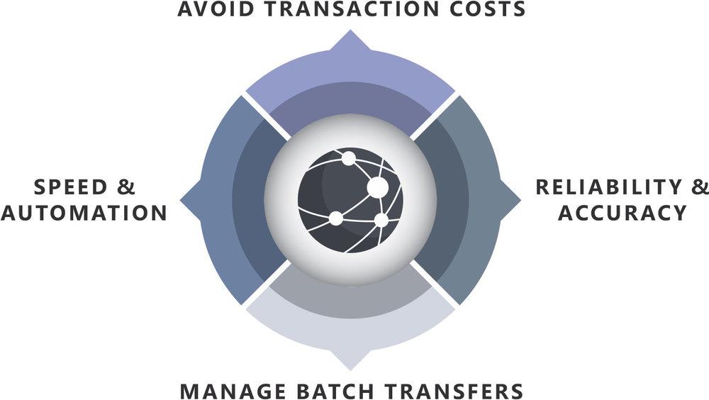 HIPAA Director Diagram