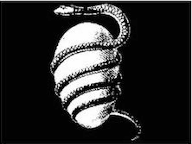 snake ourobous.jpg