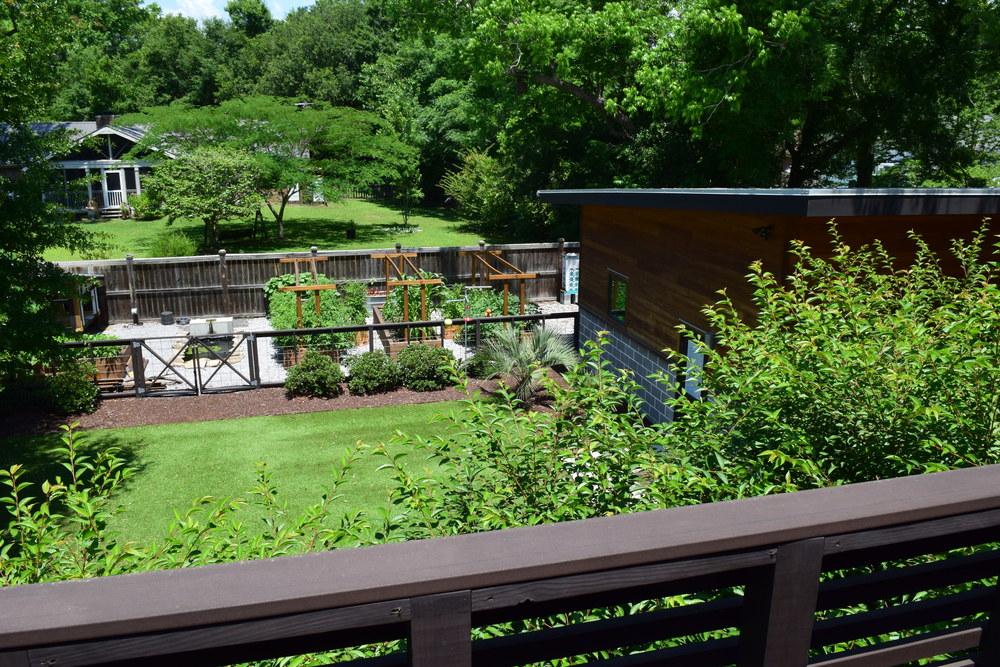 exterior backyard.JPG