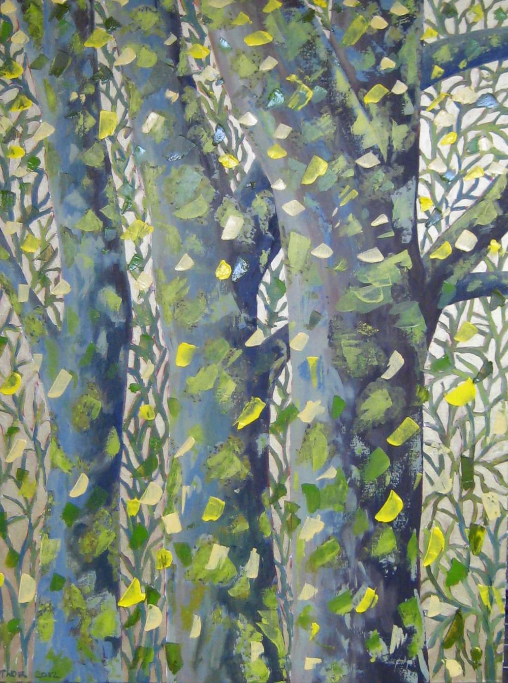 Tree Trunks with Lichen