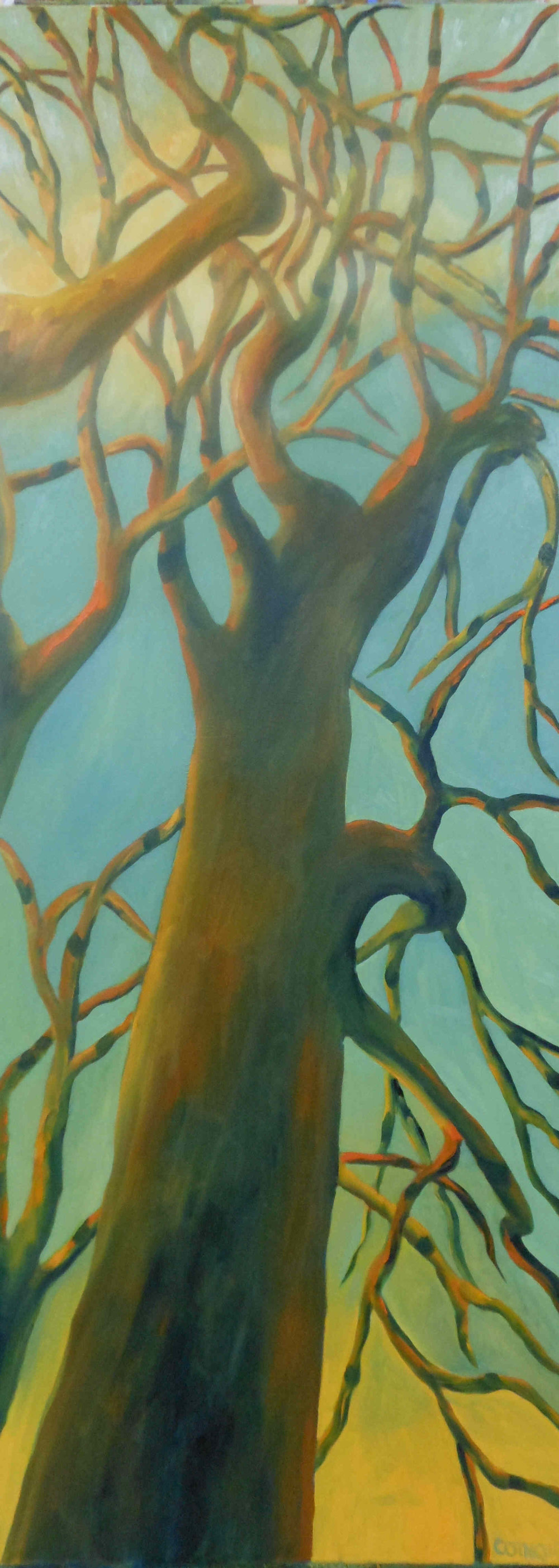 Shadow Trees in Orange and Green