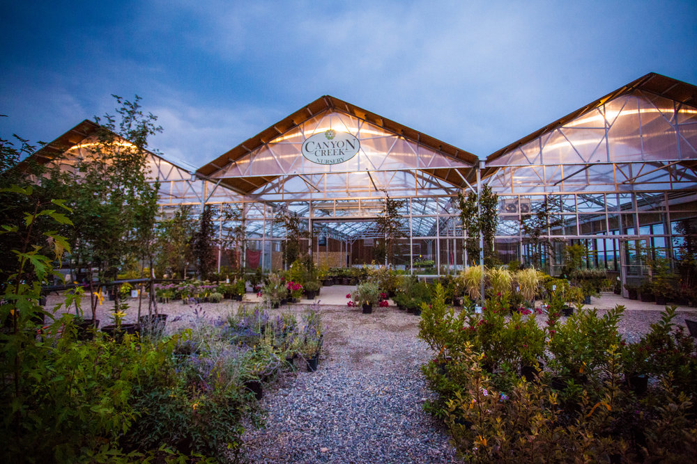 Canyon Creek Nursery