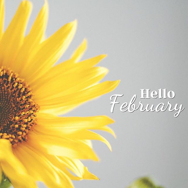 Wait, what? February...really? She must have snuck up on us cause there's no way January's over yet right?.... - #letterglow #graphicdesign #designfreedom #typography #february #2016 #makeitawesome #creativity