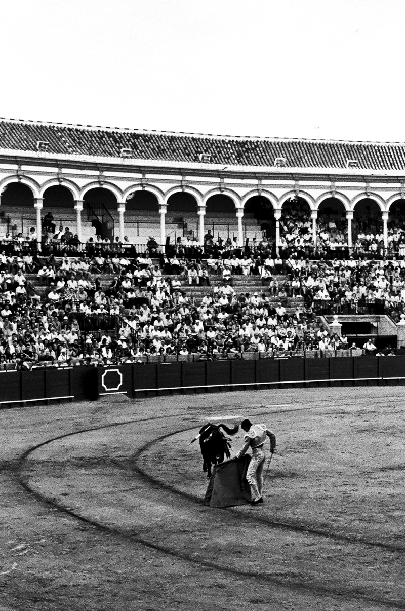 BULLFIGHT - SEVILLA, SPAIN - 2012