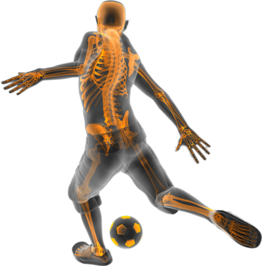 Did you know that the science of the human body can be learned & experienced through sports participation? Take a closer look.