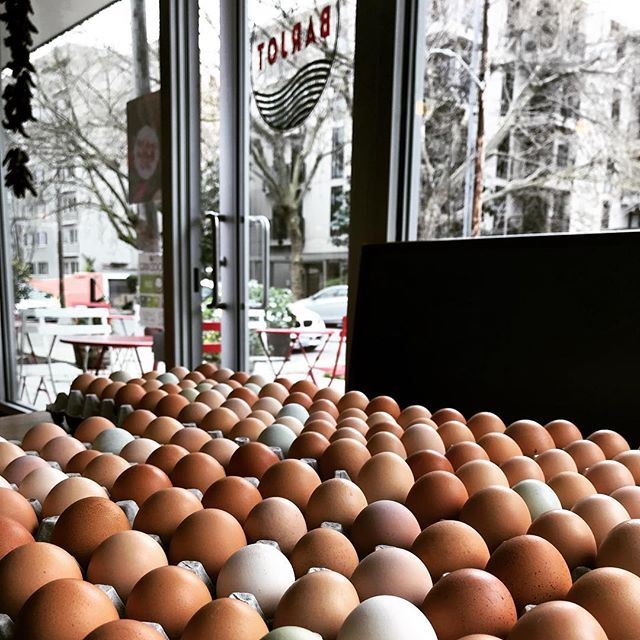 These eggs! Oh these eggs! Barjot will proudly be serving @lazybranch pasture raised organic eggs this weekend and from here on out. #barjotseattle #barjot #pastureraised #pastureraisedeggs