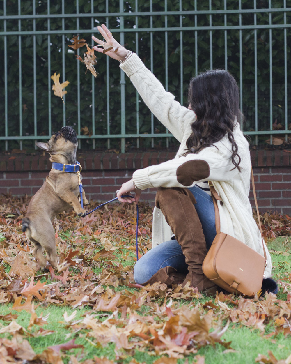 Mark & Graham cable cardigan, daily crossbody bag, Italian leather leash and collar, french bulldog puppy, sweater with elbow patches, Steve Madden Eternul over the knee boots, cute fall outfits.
