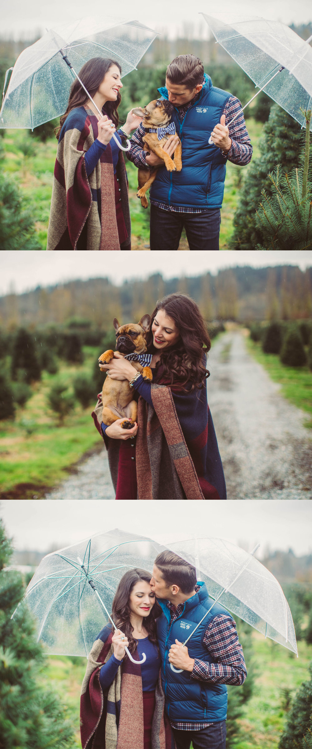 Style cohesive outfits for the family with these tips, winter family photo outfits, holiday card outfits for the family, Christmas engagement photo ideas, Christmas tree farm family photos, frenchie puppy.