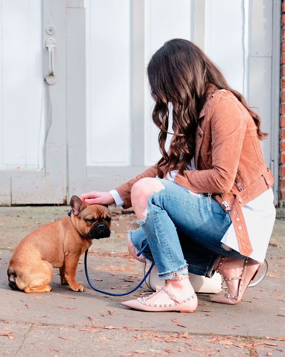 Cute winter outfits.  Blank NYC morning suede moto jacket with destroyed girlfriend jeans, Valentino rockstud flat dupes, oversized white shirt, and Karen Walker sunglasses and red fawn french bulldog puppy.