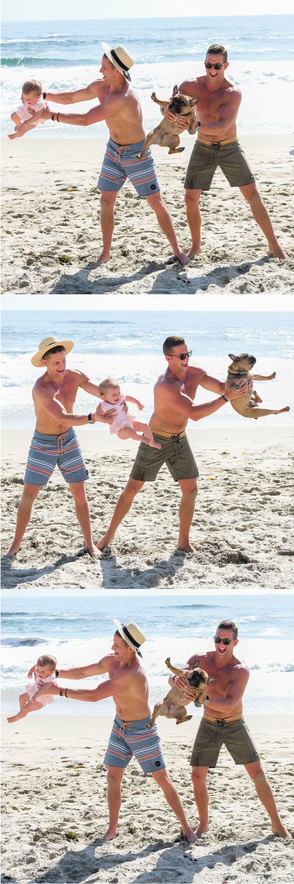 Funny weird family photos.  Baby and a frenchie on the beach.