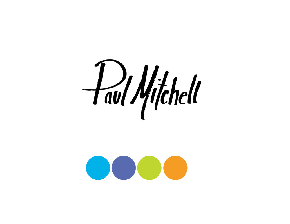 Paul_mitchell_presentation-web2.jpg