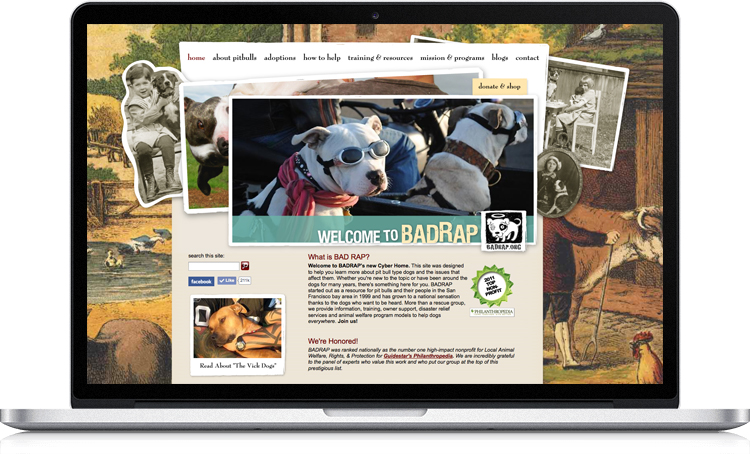 This website for Bay Area nonprofit BADRAP showcases the organization's dogs available for adoption, as well as information about the organization and useful tips for dog owners. We worked closely with the organization's directors to design a unique site that reflects their personal design aesthetic. The result is proof that a website can be both beautiful and highly functional.