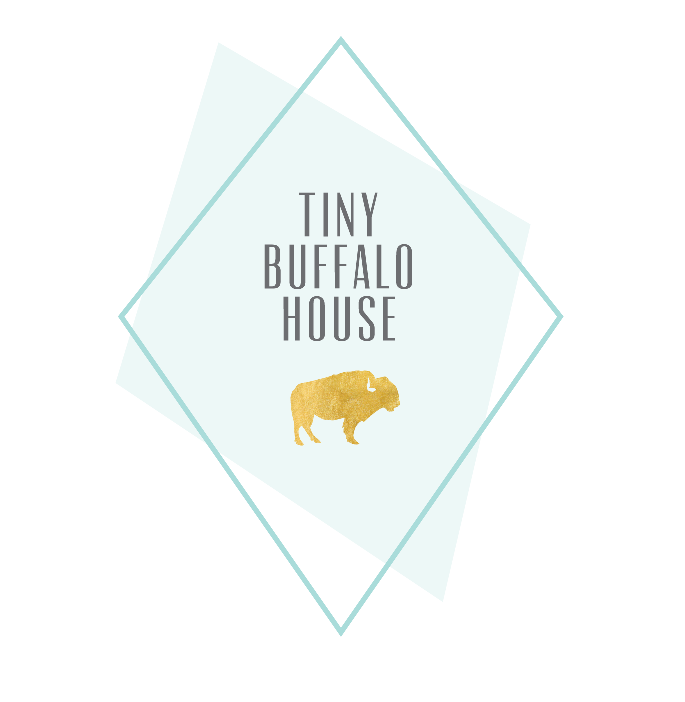 Tiny Buffalo House