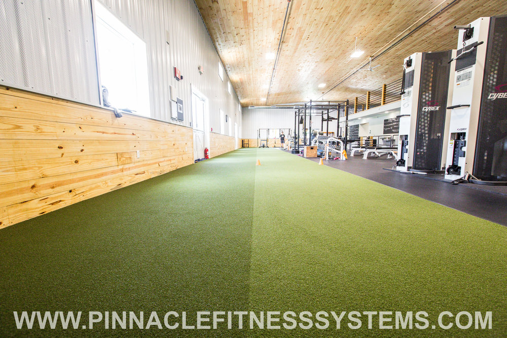 PFS-Farm-Gym-Gibsonia-Ecore-Speed-Agility-Turf-2.jpg